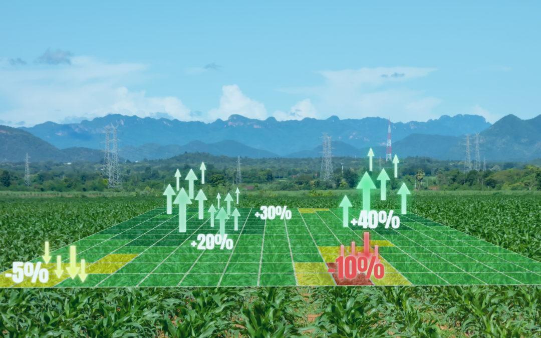 Poddziałanie 4.1.3 Modernizacja gospodarstw rolnych – obszar nawadniania w gospodarstwie