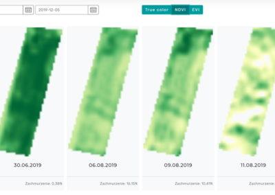 Obrazowanie satelitarne upraw NDVI